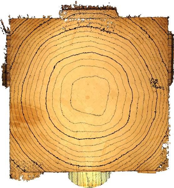 Lignes de niveaux de la voûte de vestibule de noviciat des Jésuites Saint-Louis à Avignon