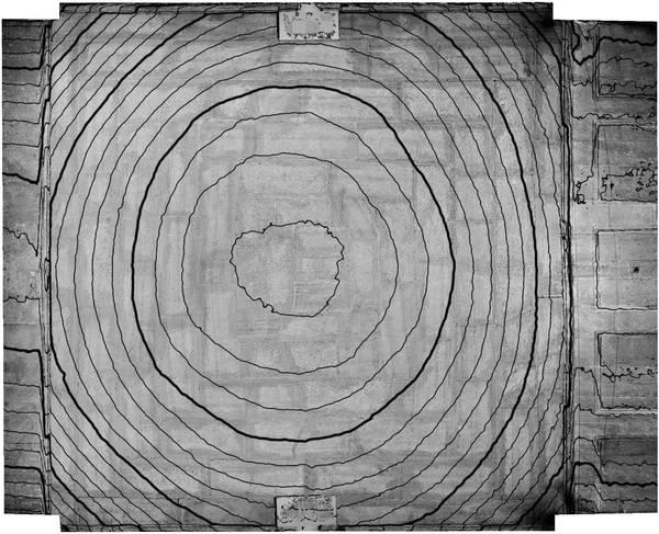 Lignes de niveaux (Delta h=0.05\,m) de la voûte de vestibule de ancien couvent des Dominicains à Carpentras