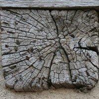 About de solive en bois de brin visible sur pan de bois à Poitiers